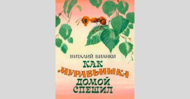 Виталий Бианки. Как муравьишка домой спешил