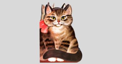 Котик-коток