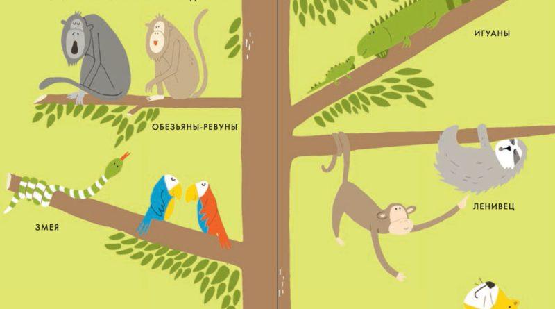 Катрин Виле. Мой маленький лес. Мой маленький сад. Моё маленькое море. Мои маленькие джунгли