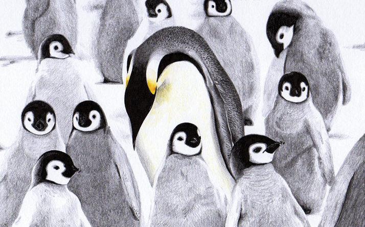 Книги про пингвинов
