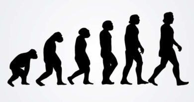 Книги об эволюции